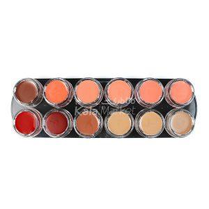Kala-Market - anastasia lipstick palette1 300x300 - پالت رژ لب آناستازیا (ANASTASIA Lipstick Palette)